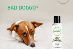 Odour Neutralizer for dogs