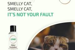 Odour Neutralizer for cats