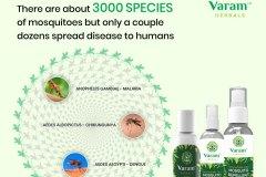 3000_species